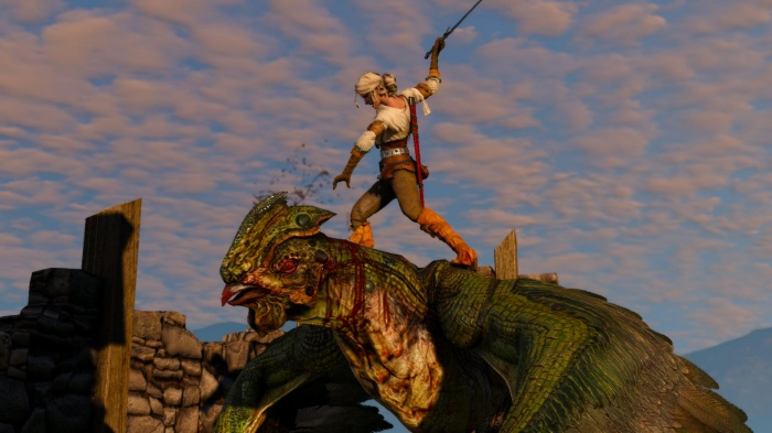 Witcher 3: Wild Hunt