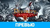 Divinity: Original Sin II: Превью по пресс-версии