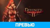 Divinity: Original Sin II: Превью по альфа-версии