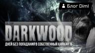 Блоги. Обзор Darkwood. «Дней без попадания в собственный капкан: 0».