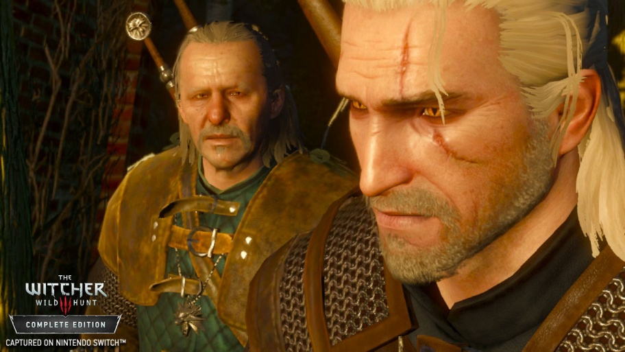 The Witcher 3, Skyrim, Torchlight II — трудности переноса игр на Switch