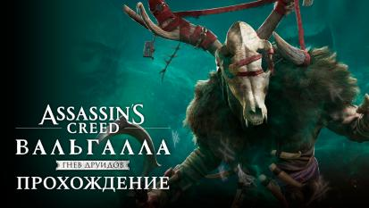 Assassin's Creed: Valhalla - Wrath of the Druids: Прохождение