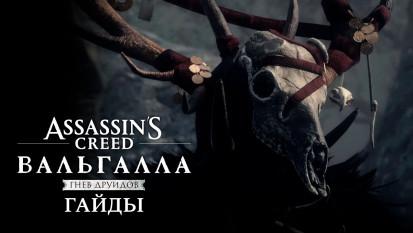 Assassin's Creed: Valhalla - Wrath of the Druids: Как найти все оружие, броню и книги знаний