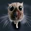 Аватар RockLee74