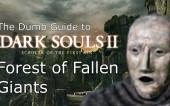Глупые гайды по Dark Souls 2 SotFS часть 3 — Лес павших гигантов