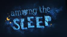 [Рецензия на...] Among the Sleep
