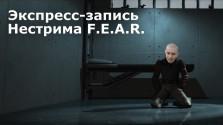 Экспресс-запись нестрима F.E.A.R. или ночь Кулаковых