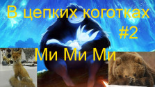 В цепких коготках: Ori and the Blind Forest. Ми Ми Ми