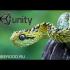 Урок по созданию игры змейка на Unity3d
