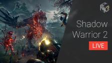 [прямой эфир] shadow warrior 2 | 22.10.16 (18:00 мск)
