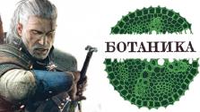 Ведьмак 3: Занимательная ботаника (Часть 2)