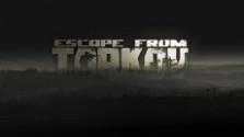 в продолжении темы банов в escape from tarkov без каких либо объяснений от студии battlestate games