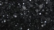 Снег и ничего вокруг. Глава 2. Одиночество.