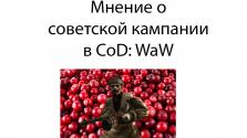 Мнение о советской кампании в Call of Duty: World at War