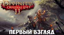 Divinity: Original Sin 2 — Первый взгляд
