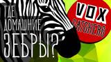 Зебры против лошадей: Одомашнивание животных [Перевод]