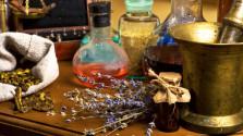 ведьмак: по грибы, по ягоды или алхимический разносол