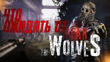 что нам ждать от «fear the wolves»?