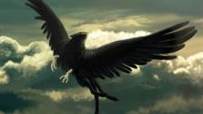 Мифология: Откуда растут перья у птицы Рух