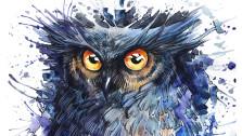 Образы птиц в видеоиграх: ч.3 Совы