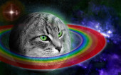 [Ивент на 1 апреля] Котейки!!! Настало время захватить мир!!!