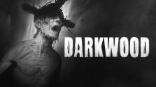 Обзор Darkwood. «Дней без попадания в собственный капкан: 0».