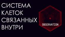 Космическая Одиссея Системы Клеток   Скрытый Смысл Observation