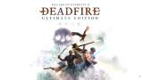 Философия Pillars of Eternity II: Deadfire. Деконструкция роли игрока.
