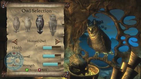 Legend of the Guardians: The Owls of Ga'Hoole - The Videogame