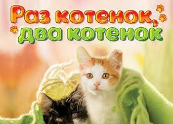 I Love Cats. 22 Cat Games