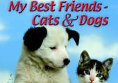 Четвероногие друзья. Кот и пес