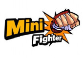 Mini Fighter