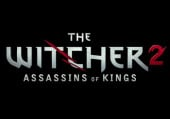 The Witcher 2: Assassins of Kings: Видеопревью