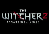 The Witcher 2: Assassins of Kings: Превью (игромир 2010)