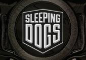 Sleeping Dogs: Save файлы