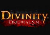 Divinity: Original Sin: Превью (игромир 2012)