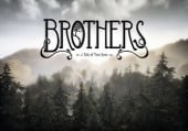 Brothers: A Tale of Two Sons: Прохождение