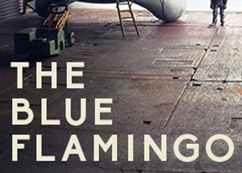 Blue Flamingo, The