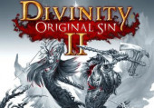 Divinity: Original Sin 2: Прохождение