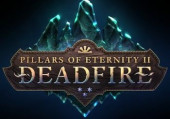 Pillars of Eternity 2: Deadfire: Коды