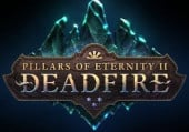 Pillars of Eternity 2: Deadfire: Видеообзор