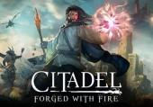 Citadel: Forged with Fire: +1 трейнер