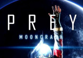 Prey: Mooncrash: Как получить психостатический резак
