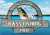 Pro BASS Fishing