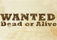 Wanted: Dead or Alive (Wanted Guns)