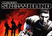 Project: Snowblind: Обзор