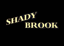 Shady Brook
