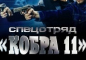 "Спецотряд ""Кобра 11"""