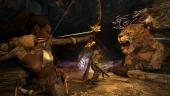 Dragon's Dogma: Dark Arisen— трейлер PC-версии, системные требования и начало предзаказов