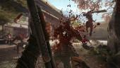 12 минут буйного экшена в Shadow Warrior 2